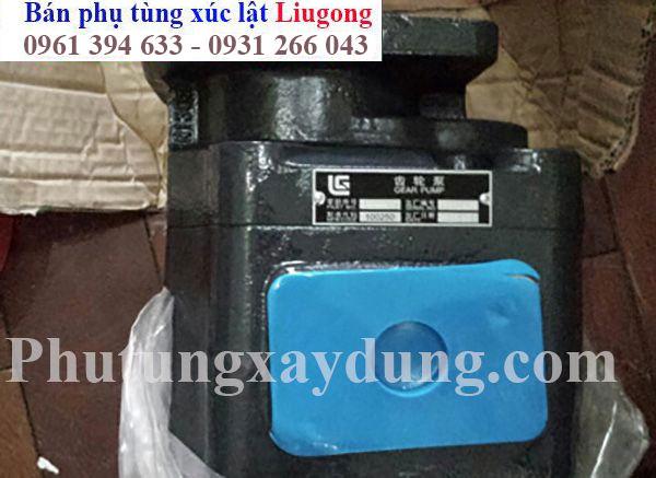 Một số hình ảnh về phụ tùng xe xúc lật Liugong Trung Quốc